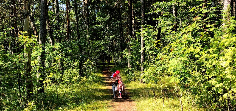 Metsäkävely perheille ja lapsille